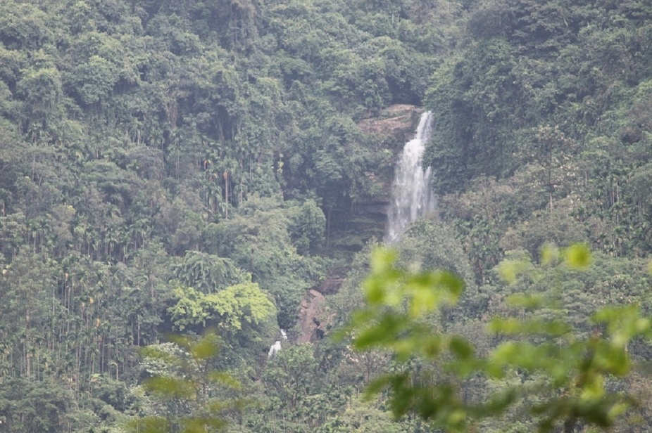A water fall in the jangle of Bangladesh.