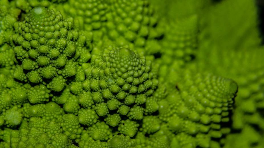 Frst plane of mathematical fractal  romanesque cauliflower