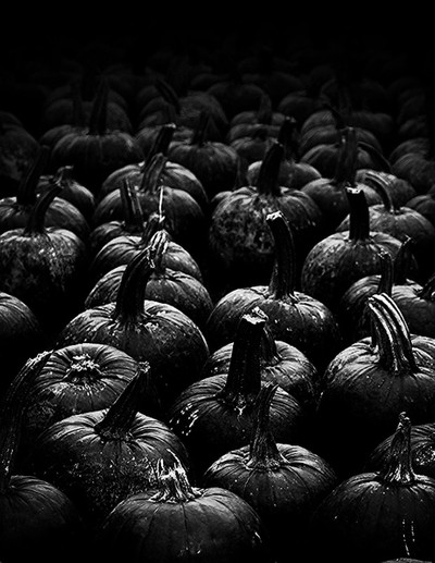 Pumkin Black and white
