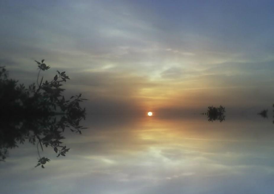 Reflecting Sunshine