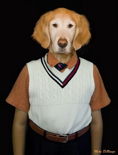 Dog Nerd 5379