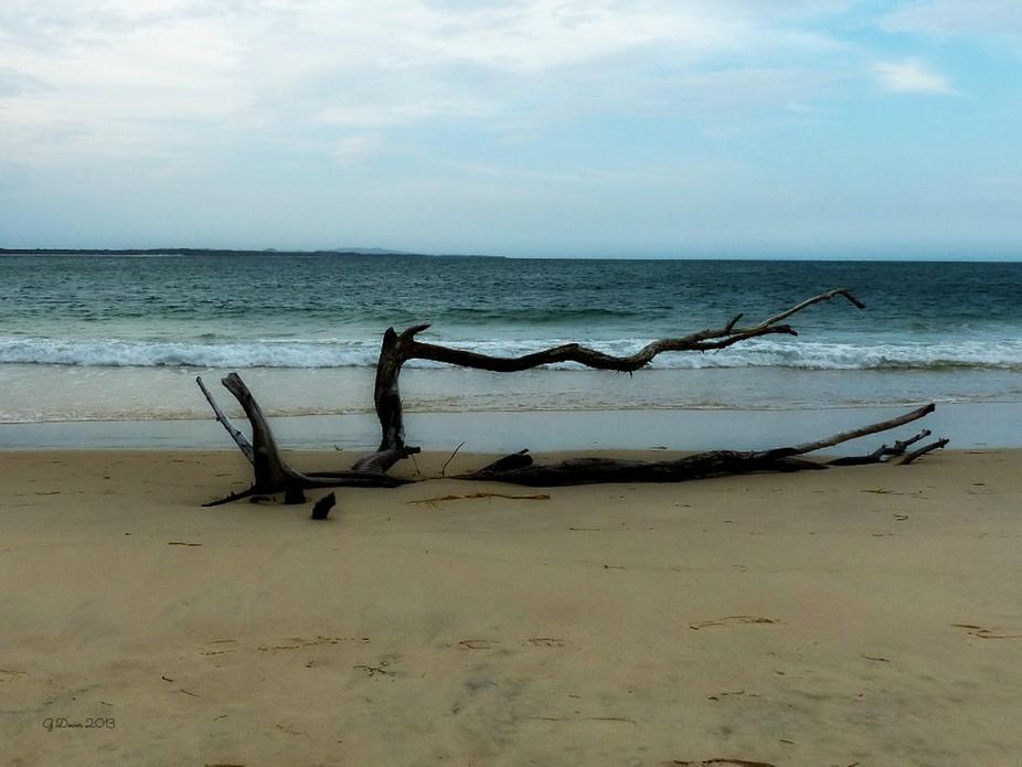 Taken on the beach at Stradbroke Island, Gold Coast