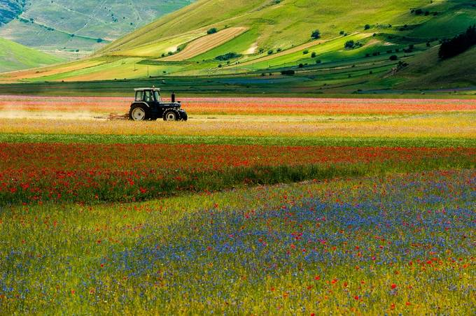 Agrimotor in Castelluccio by antoniozarli - Around the World Photo Contest By Discovery