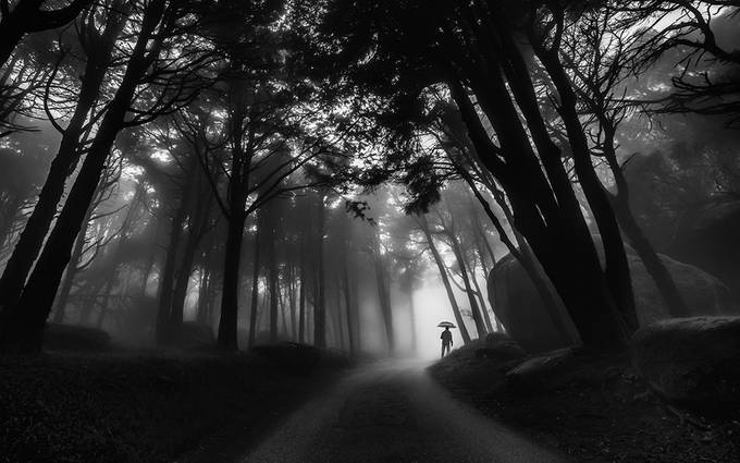 Through the mist by Pajomend - Epic Black and White Photo Contest