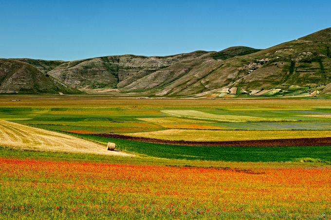 Castelluccio di Norcia by antoniozarli - Meadows Photo Contest