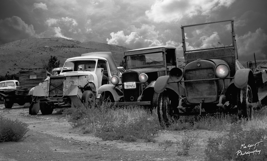 \'Ol Timers Row_BW2