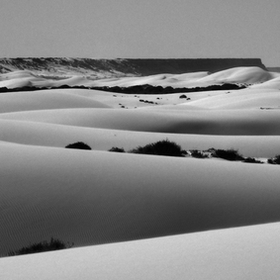 Sensuous white sand dunes stretch off into the distance on a beautiful August winter day near Eucla Australia.