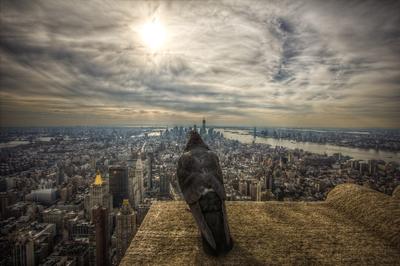 New Yorks Watchmen