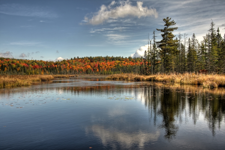 Roadside lake in Near Northern Ontario; Algonquin Park area.