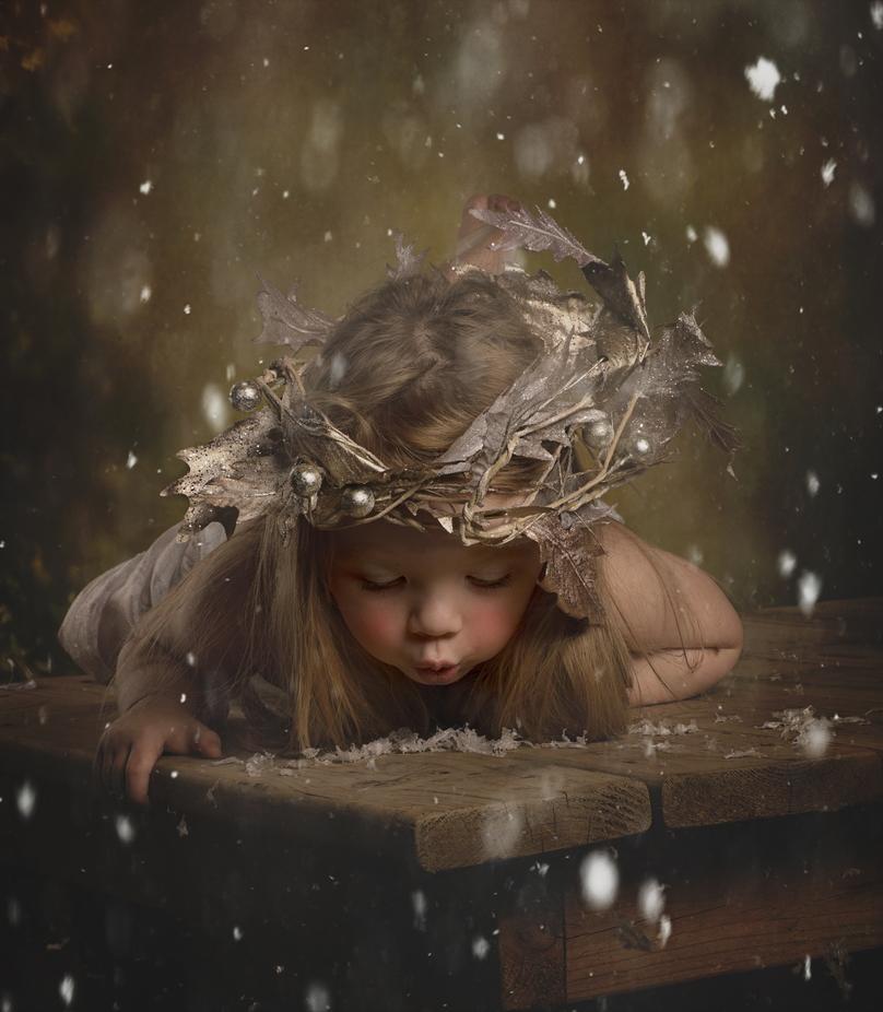 snowfairy by LoriLynnn - Visual Poetry Photo Contest