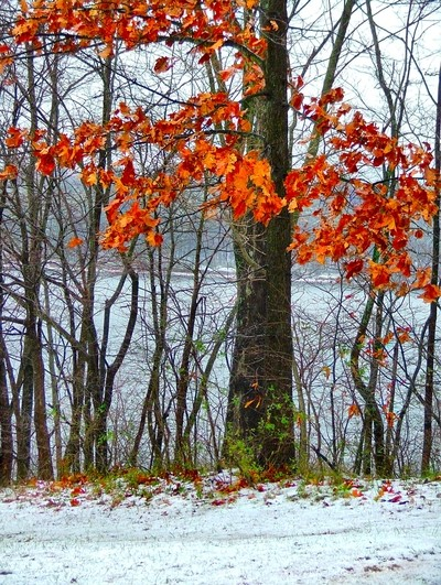 A Seasonal Blend