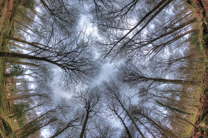 Take a look to the sky just before you die by Sandro_Ortolani - Skywards Photo Contest