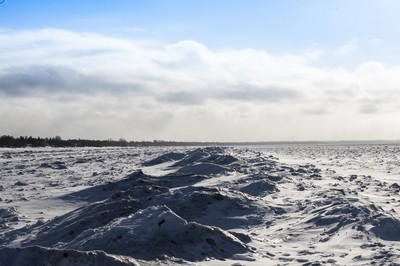 winter walk on the beach