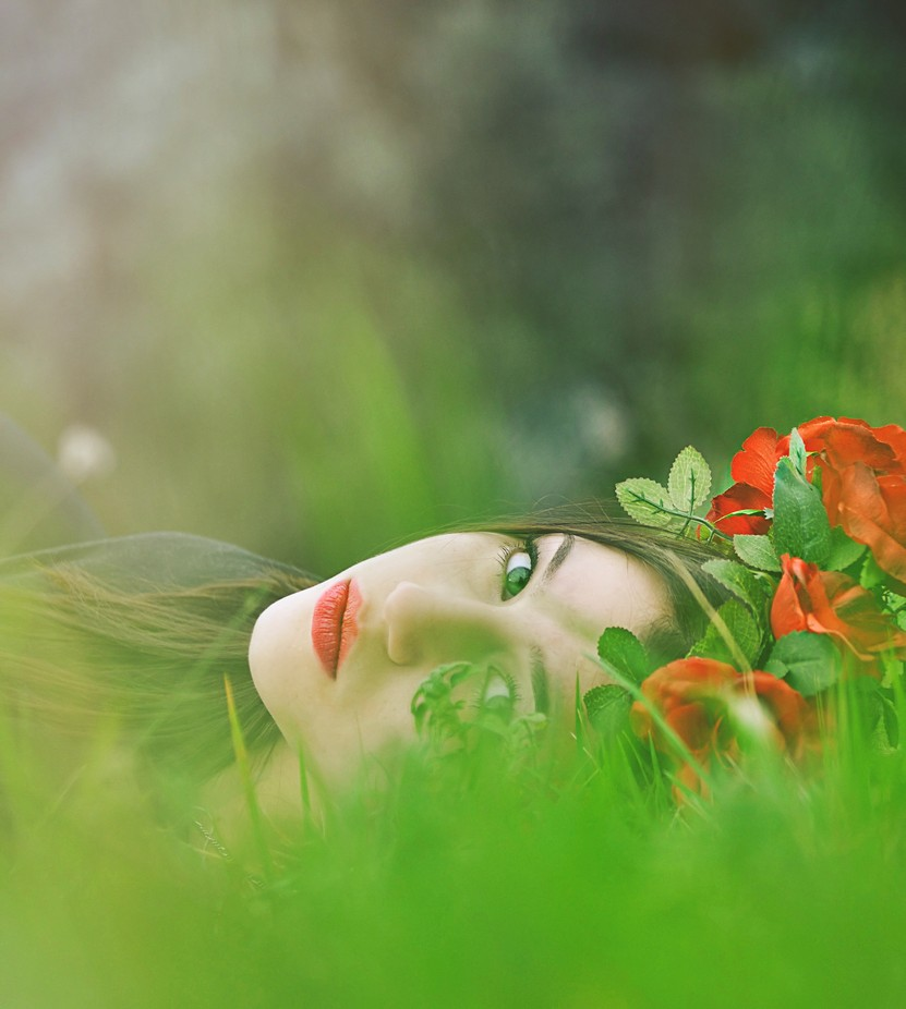 Rose by ReaVasic - Creative Reality Photo Contest