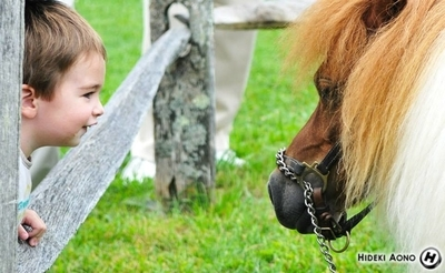 Kid with Horse