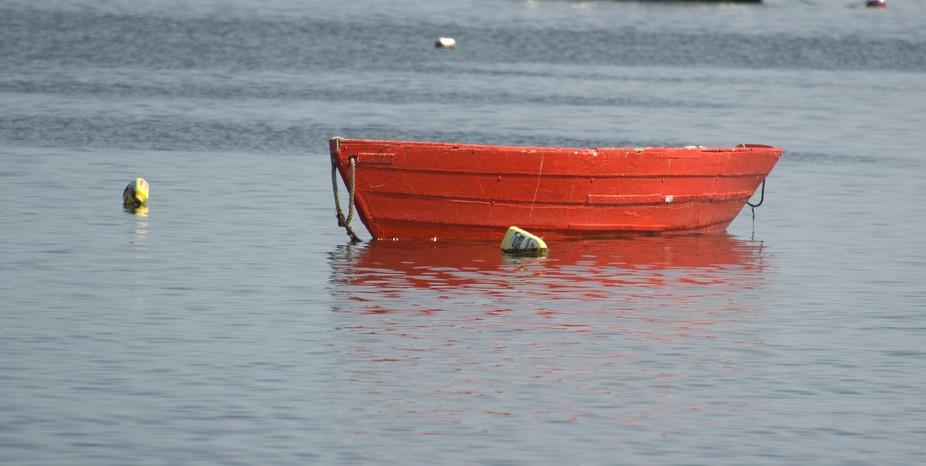 Boat/Cape Cod