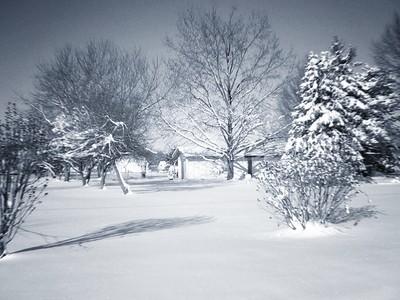 Winterized House