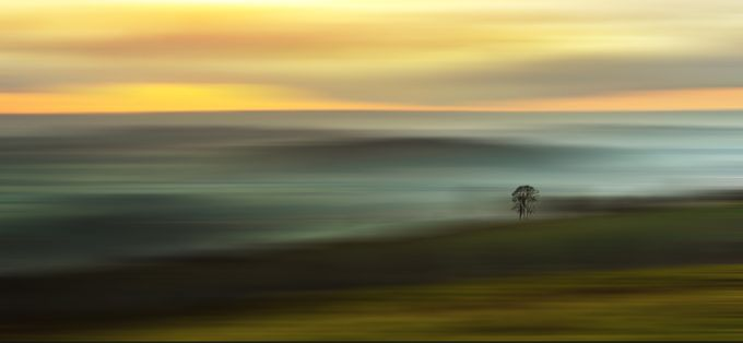 Lonesome Tree on the Horizon by ceridjones - Lost In The Field Photo Contest