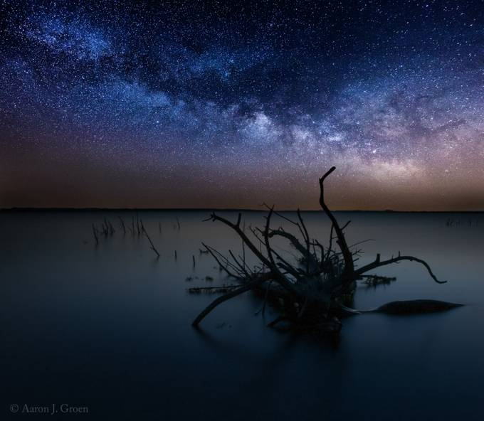 Dreamscape by aaronjgroen - Fallen Trees Photo Contest