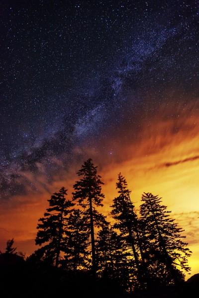 Absorbing Light Pollution