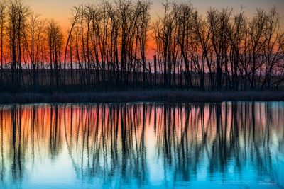 Dawn Reflections II