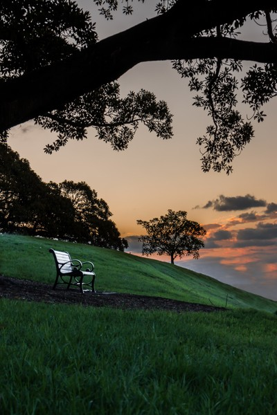 Silhouette With Bench - Peaceful