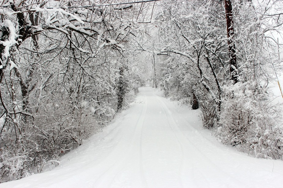 A drive blanketed in snow