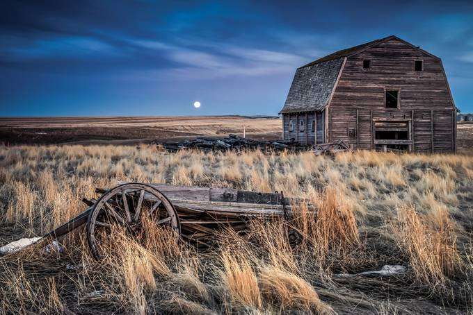Invention of Justice by Wayne-Stadler-Photography - Farming Photo Contest