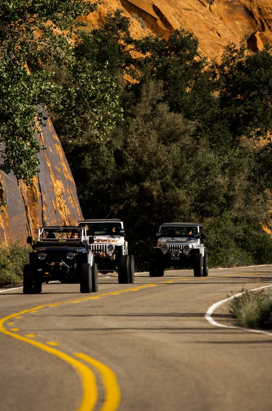 Jeep, Jeep, and Jeep by steveyancey - My Favorite Car Photo Contest