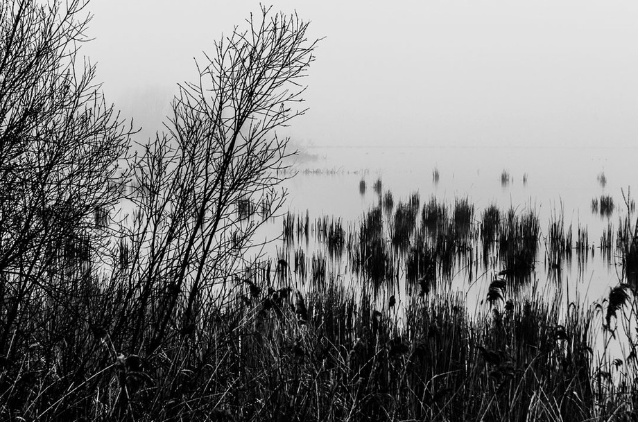 Last week, on Thursday, March 13th, after a few days with beautiful spring weather, at temperatures very high for this time of year here in the south-western parts of the Netherlands, the day started as if autumn was back again. With fog or mist so dense there was very limited sight. Dangerous on the roads, a perfect day for B&W photography.  So I took my bike, my camera and one single zoom-lens 16-85 mm. Here are some of the results of that day of photography in B&W mostly.