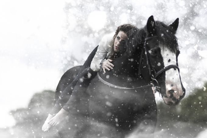 Horse by leecalvin917 - I Heart Animals Photo Contest