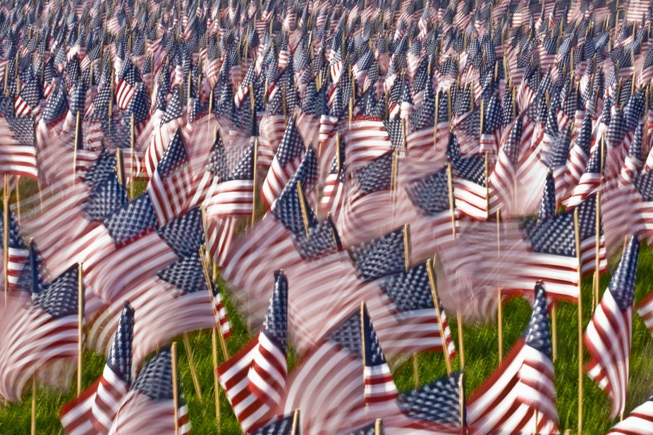 Hundreds of Memorial Day flags blow in the wind on Boston Common.
