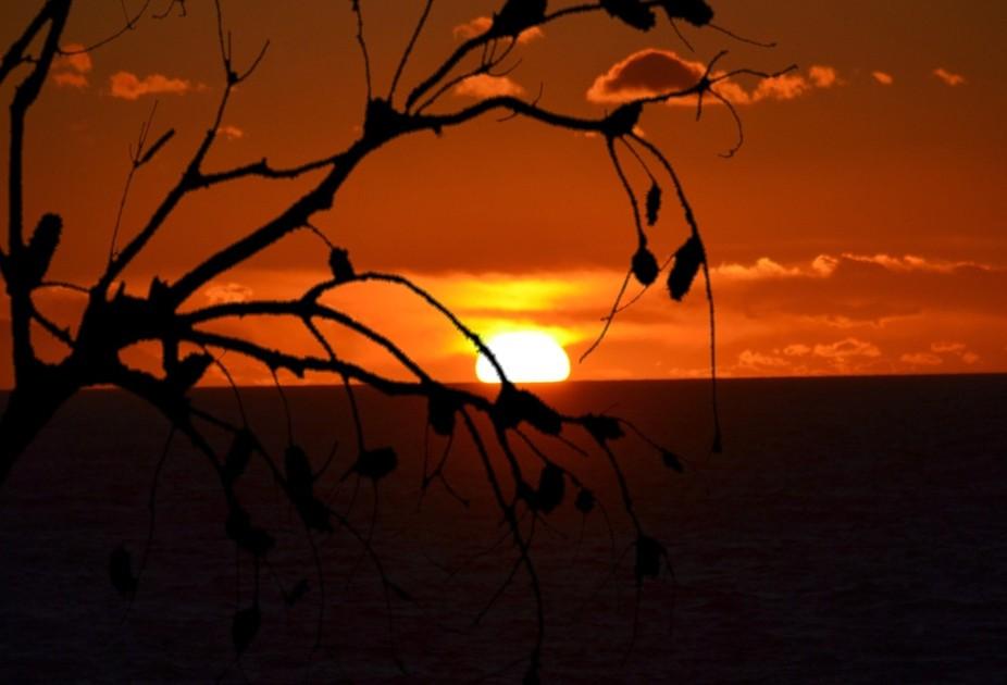 www.kayecoglanphotography.com