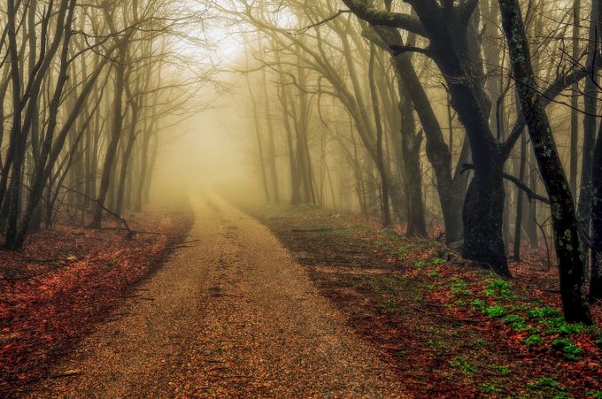 The Dirt Road Photo Contest Winners