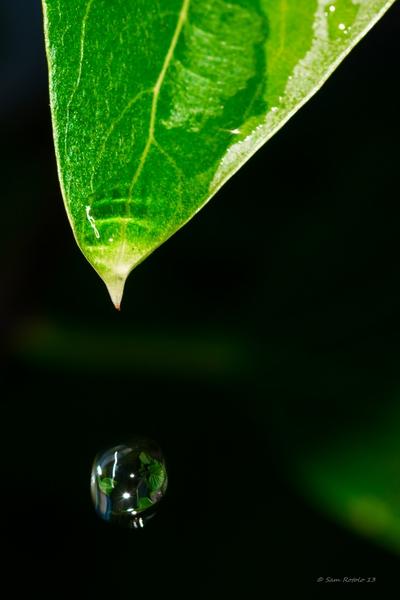 2013_Water_Drop-1018