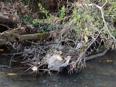 Please keep our streams clean!