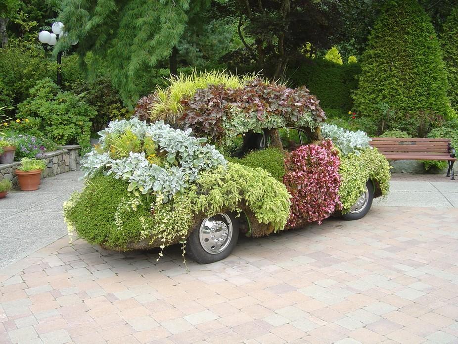 Minter Gardens flowered VW Chilliwack