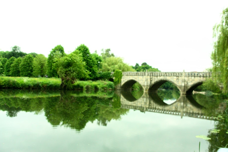 Avon River Reflections