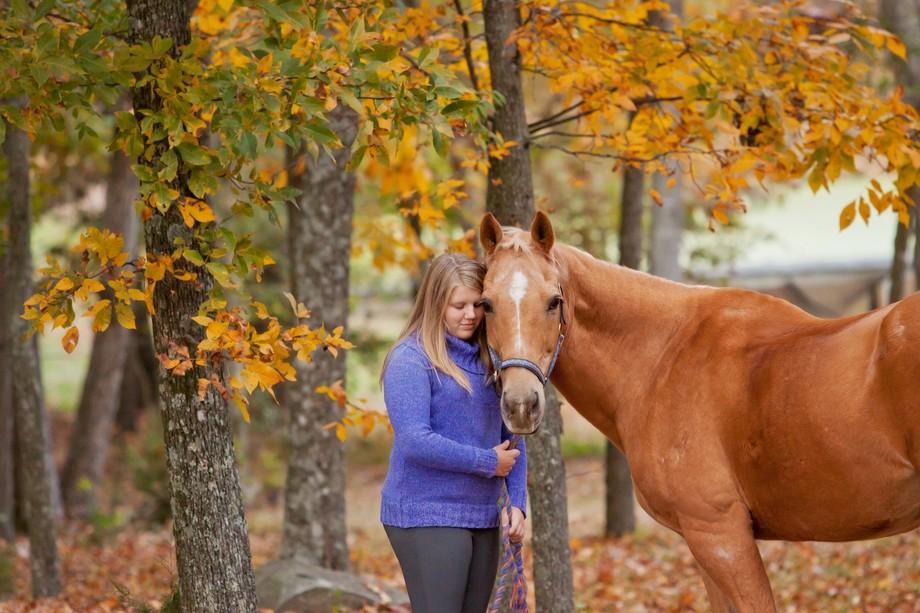 Horsey Love