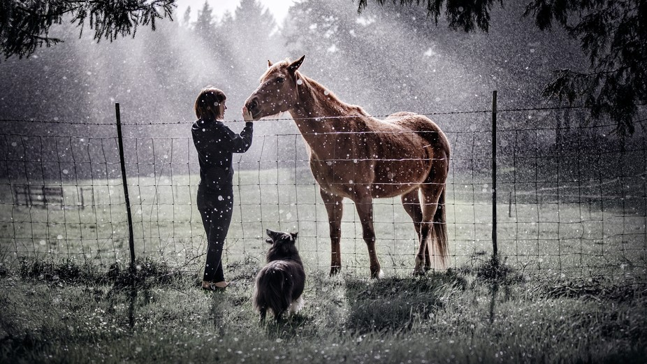 My girlfriend and I went to her farm to play with her dog and horses. It started raining heavily ...