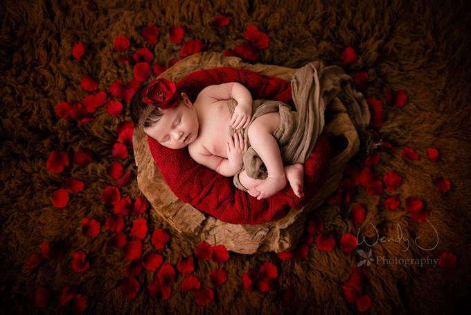 Vancouver Newborn Photographer Wendy J Photography by Wendy-J-Photography - Fill Flash Photo Contest