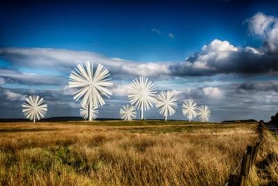 Wind Farm 4