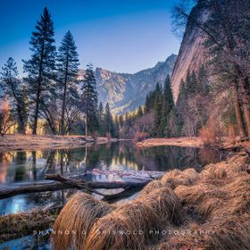For the love of photography!