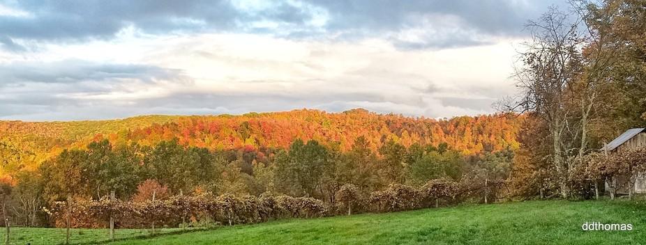 Fall on the ridge