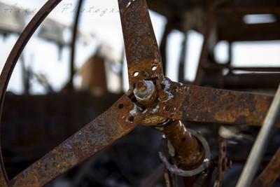 Skeletal Steering