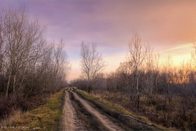 Country road to sunset