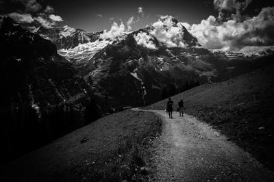 A Swiss Walk