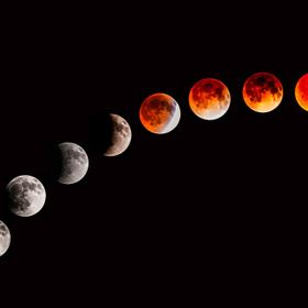 A collage showing the stages of the April 14, 2014 lunar eclipse.