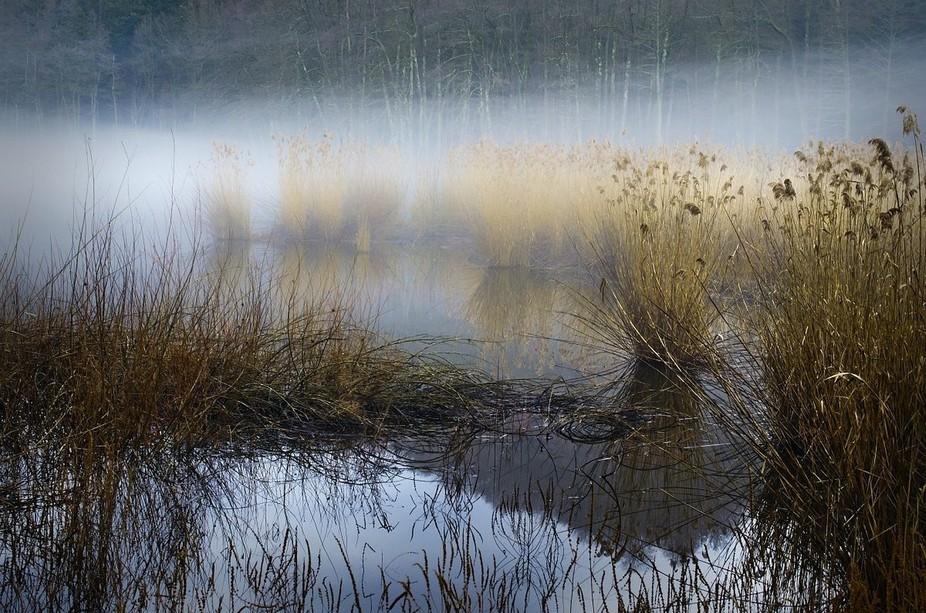 mysterious mist
