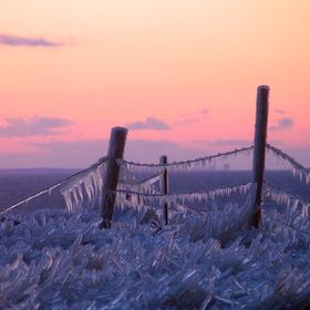 Ice formed on fence on bank of Bay of Chaleur when wind gusts blew ocean spray on it.